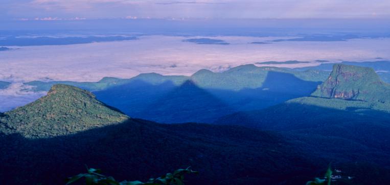 Shadow of the Peak